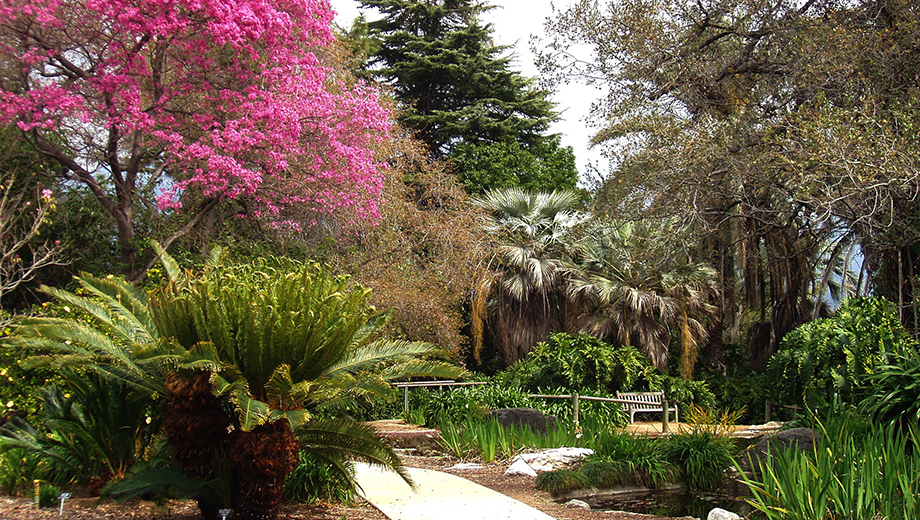 la-county-arboretum-venue